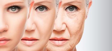 anti aging rules