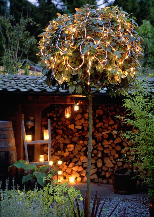 patio light decor idea