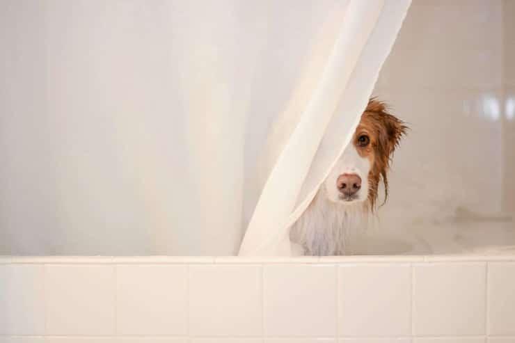 bath benefits