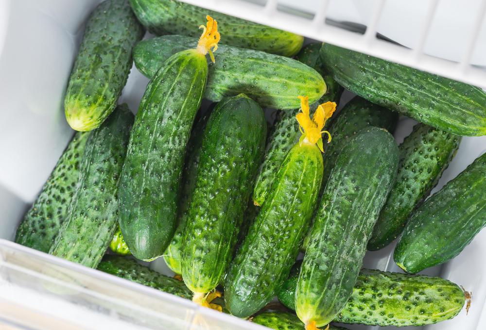 refrigerate cucumbers