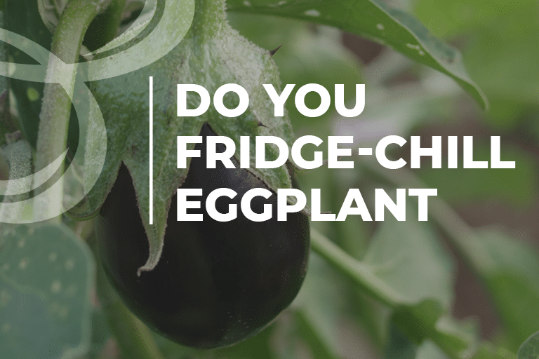 do you fresh chill eggplant