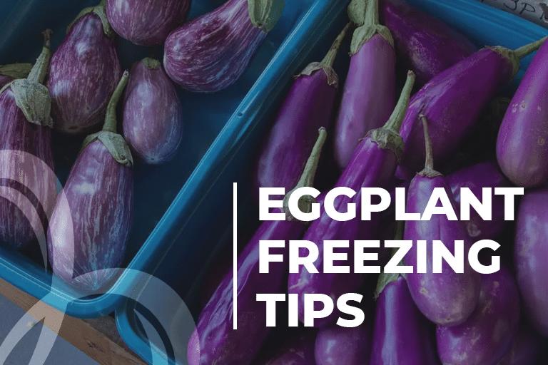 Eggplant Freezing Tips