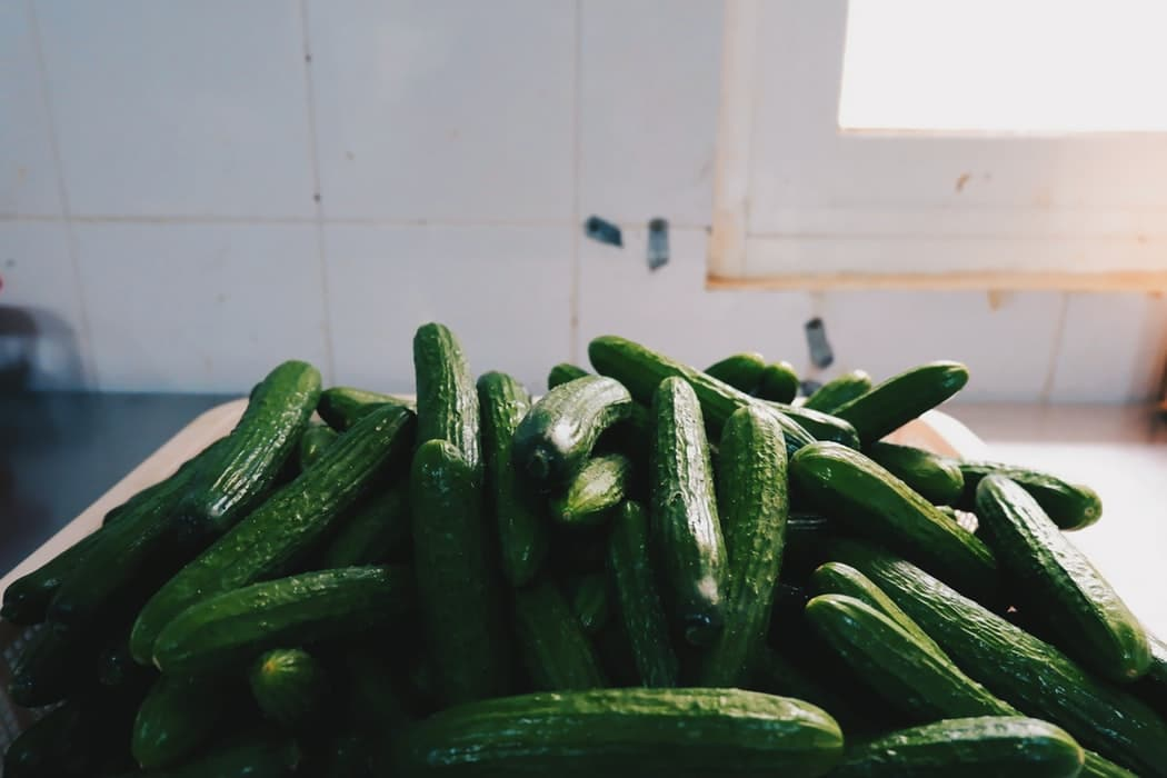 How to Tell If Cucumbers Gone Bad