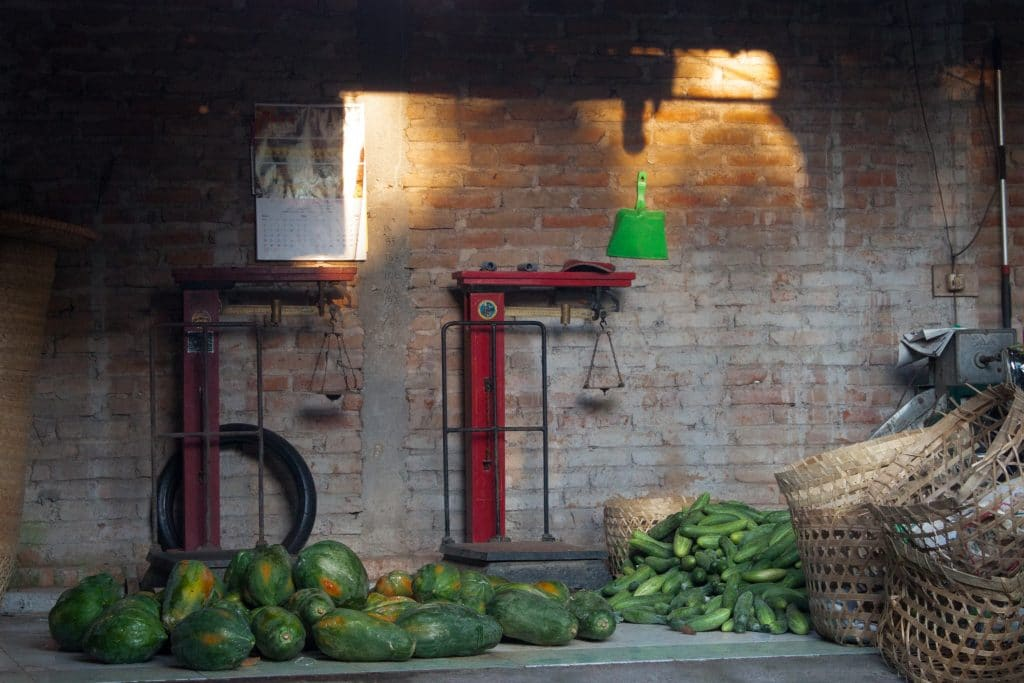 keeping cucumbers fresh
