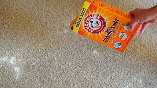slime removal from carpet