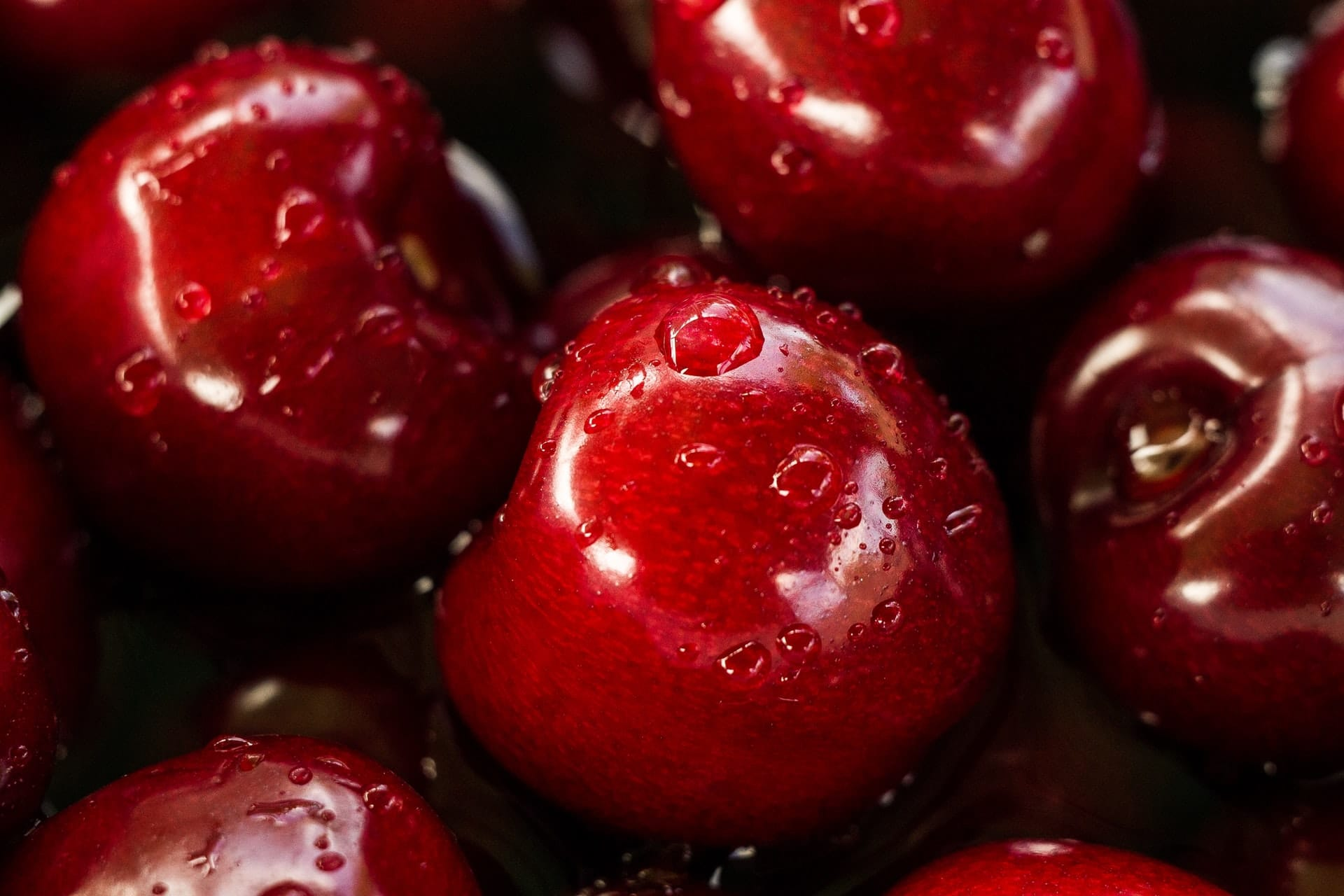 When are cherries in season