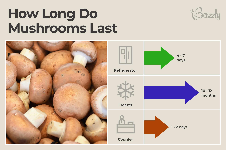 how long do mushrooms last