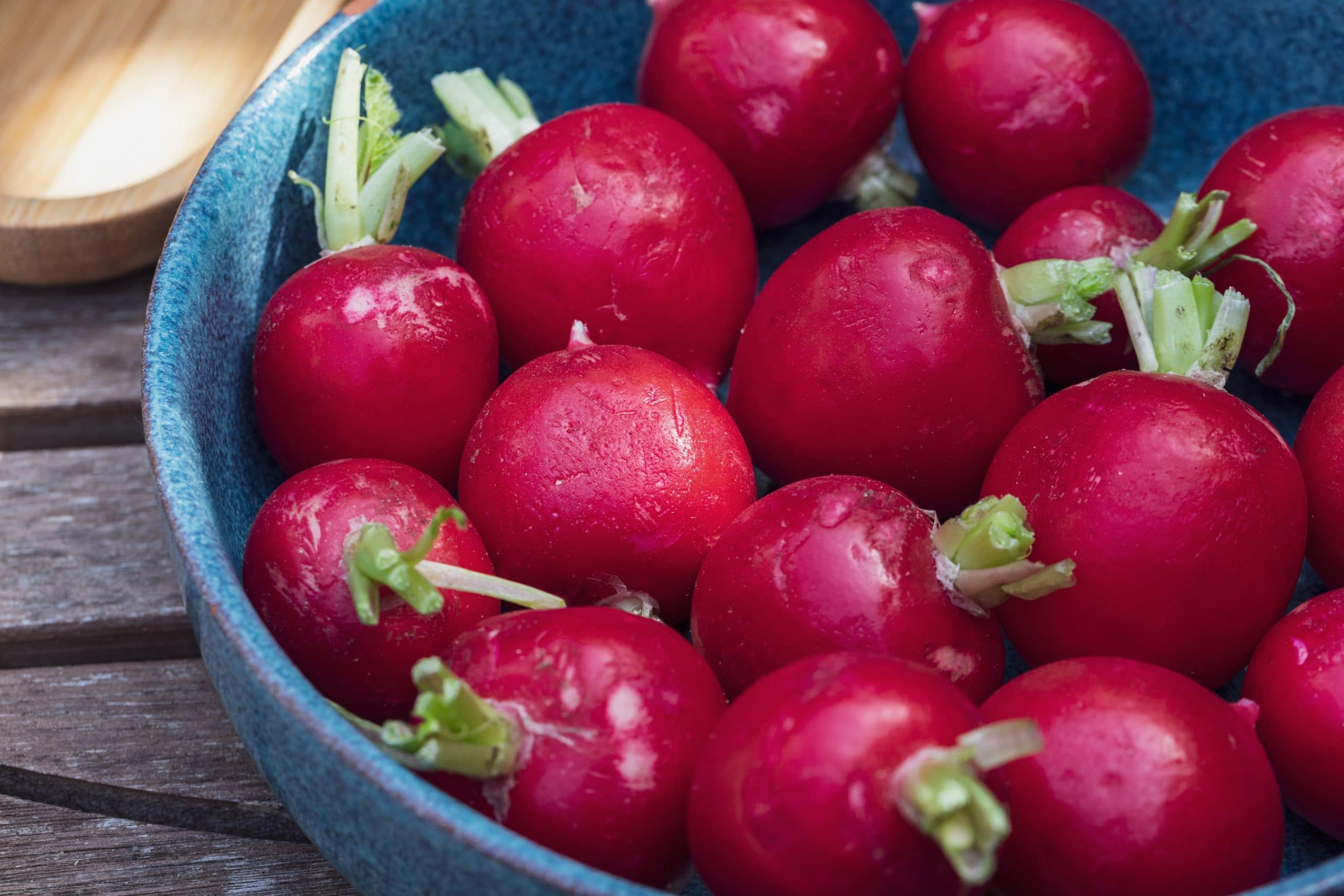 How to store fresh radishes from the garden