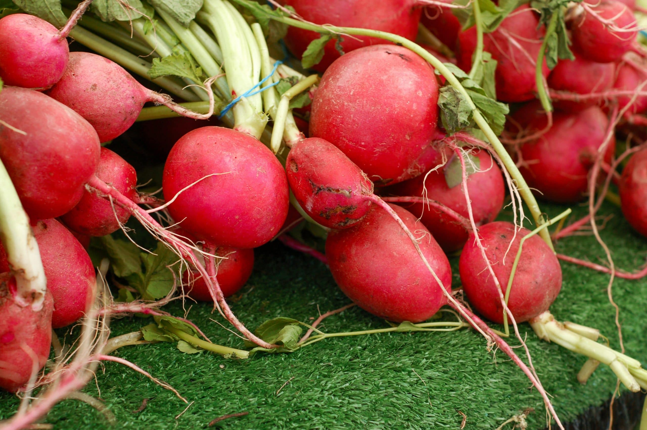 How to Store Preserved Sweet Radish