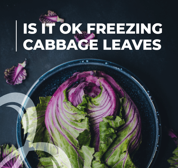 is it ok freezing cabbage leaves