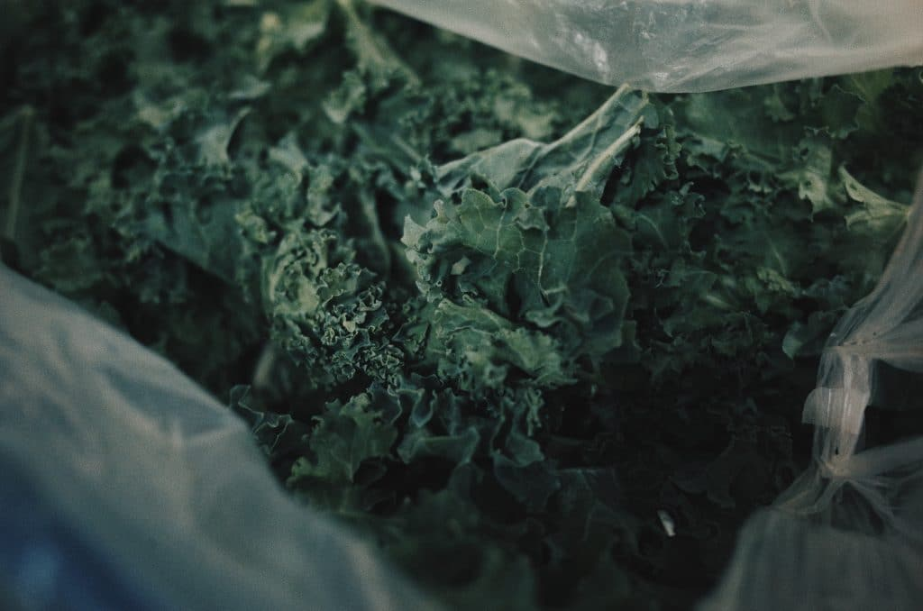 keep kale fresh