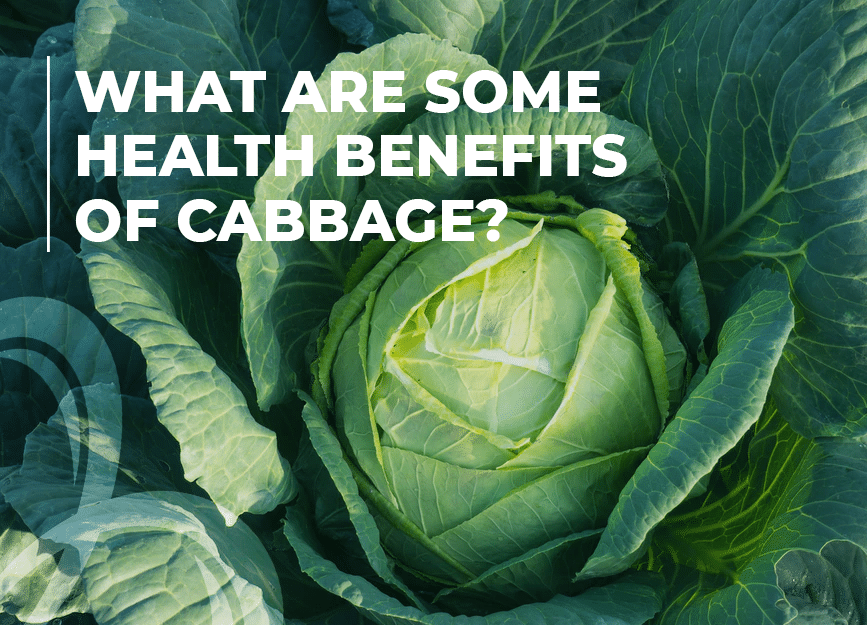 what are some health benefits of cabbage