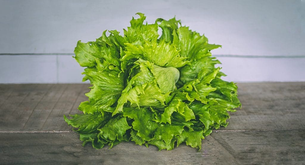 Freezing Lettuce