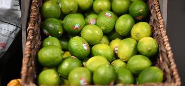 How Long Do Limes Last