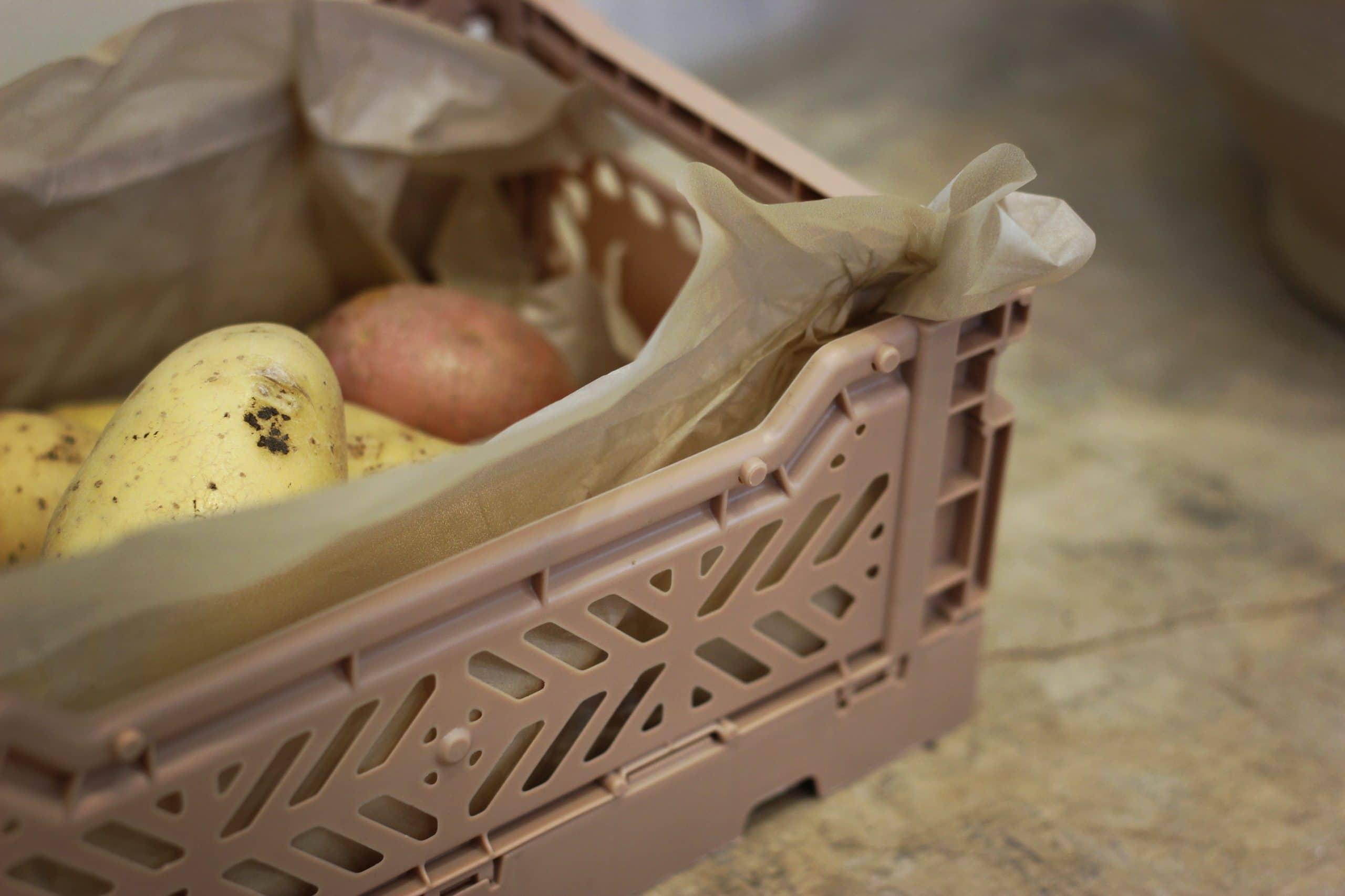 Potato Shelf Life