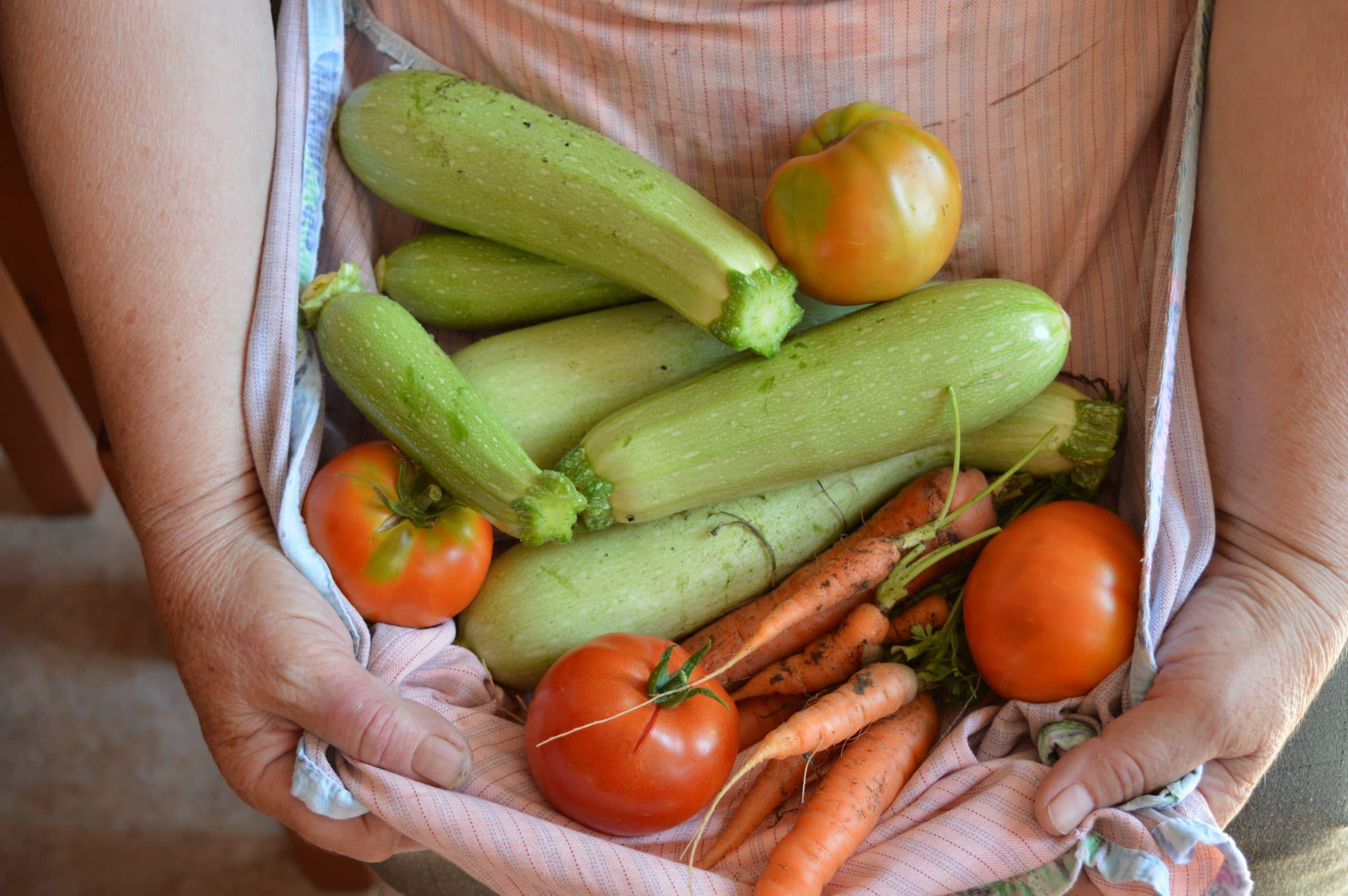 Storing Zucchini