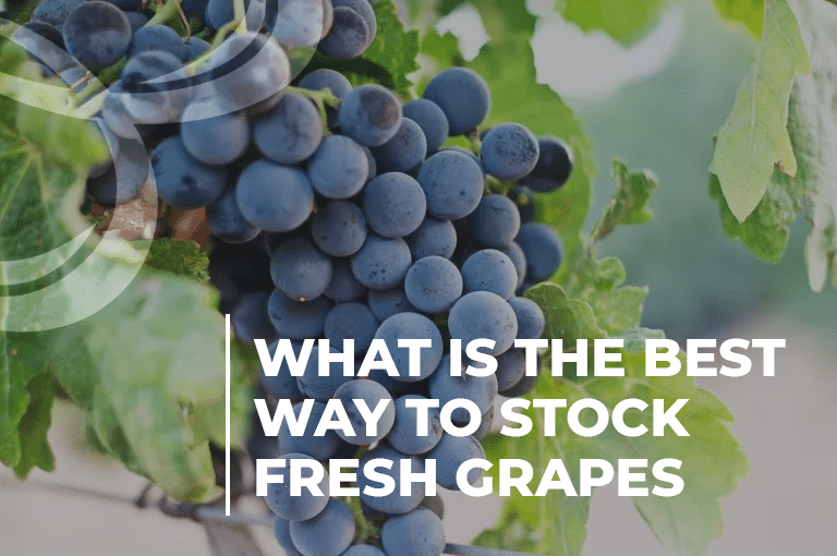 What is the best way to stock fresh grapes