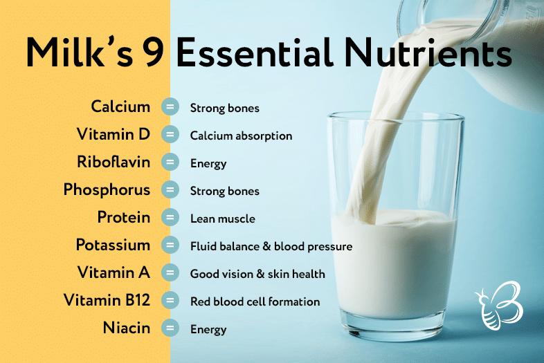 Can You Freeze Milk | The Ultimate Guideline