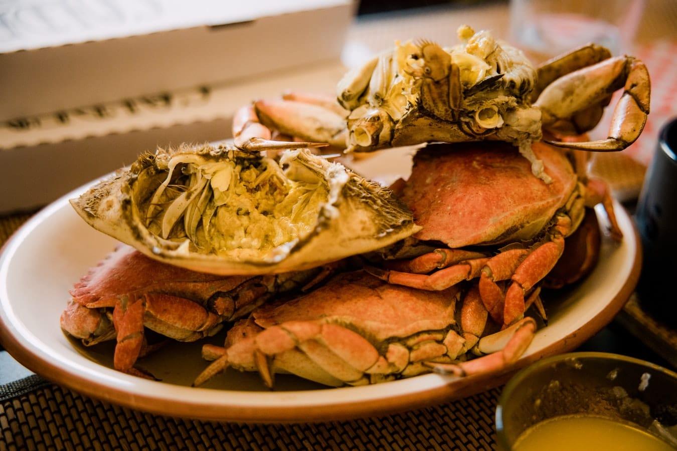 Can You Freeze Crab Chowder