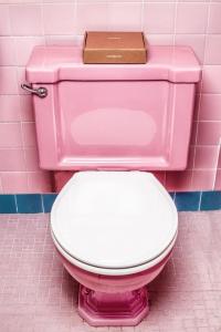 The Best Toilet Seats
