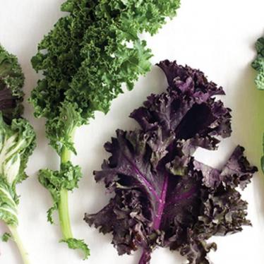 what does kale taste like