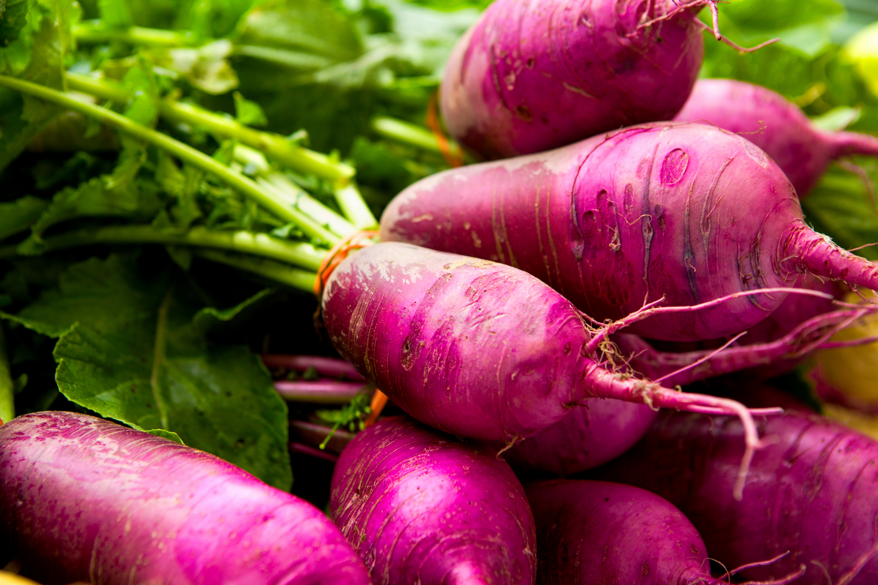 7 Creative Ways to Cook With Turnips