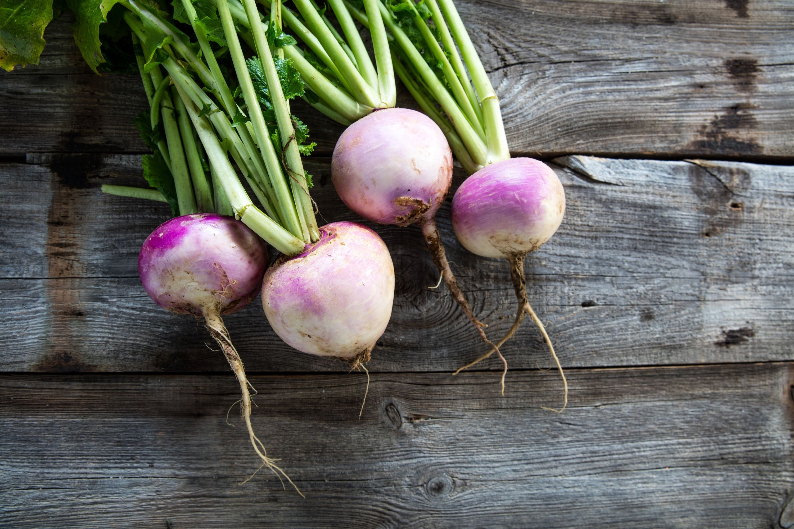 The Recommended Turnip Cooking Methods