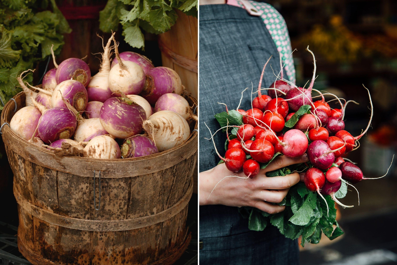 Turnips VS Radishes