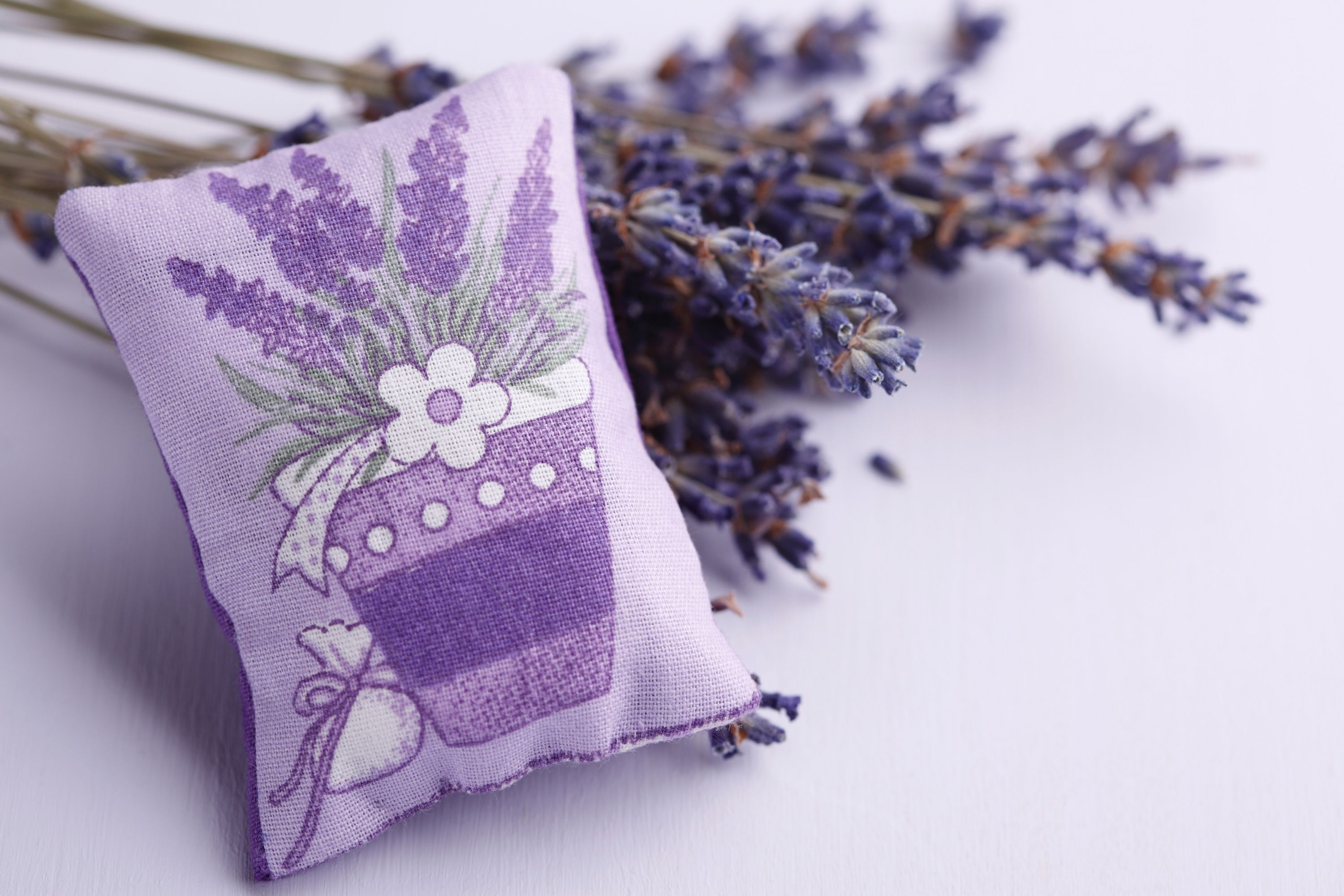 7 Reasons To Include A Lavender Pillow To Your Wellness Essentials relieve neck
