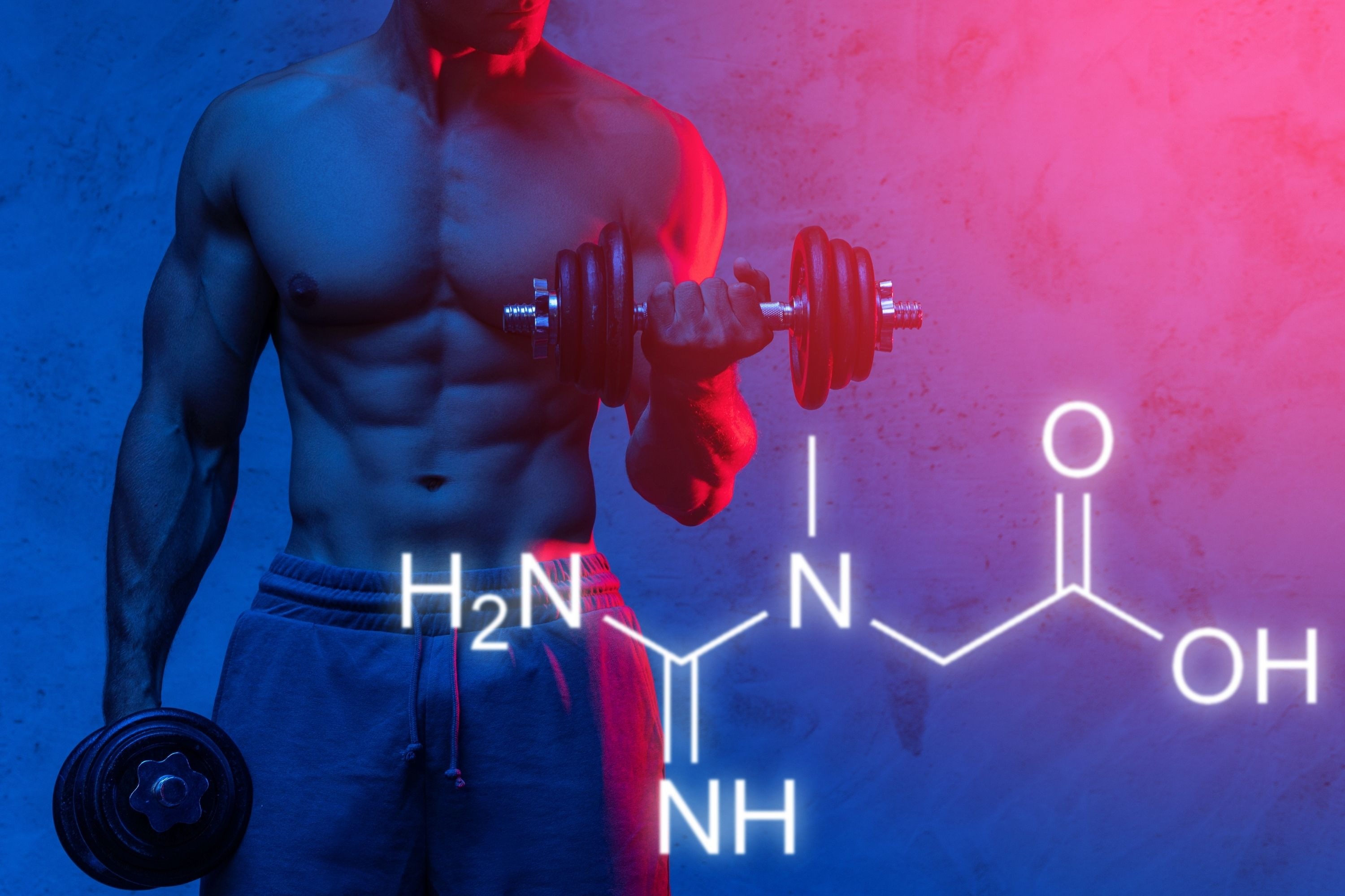 Creatine Aids In Producing More Muscle Cells