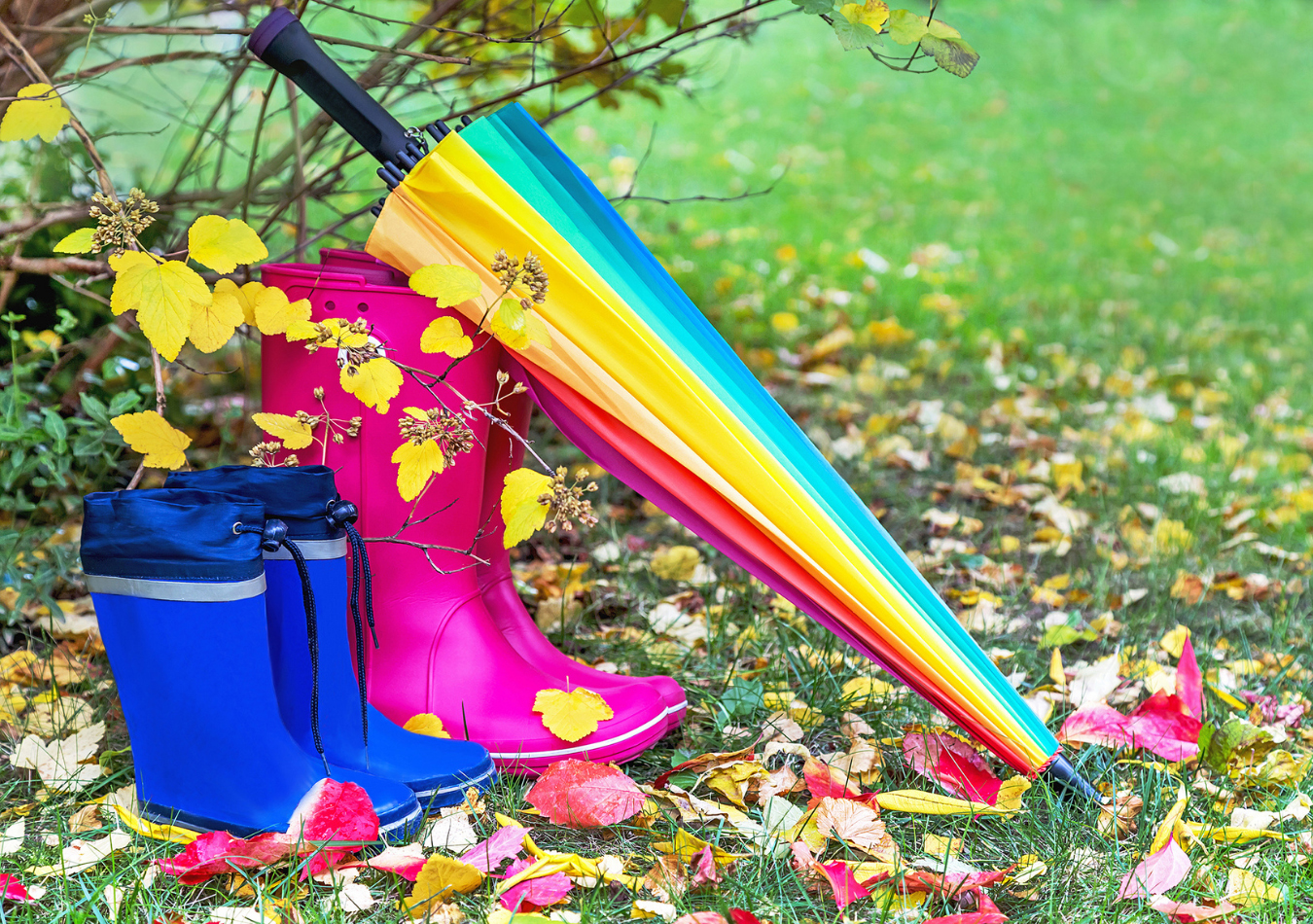Asters boots 3