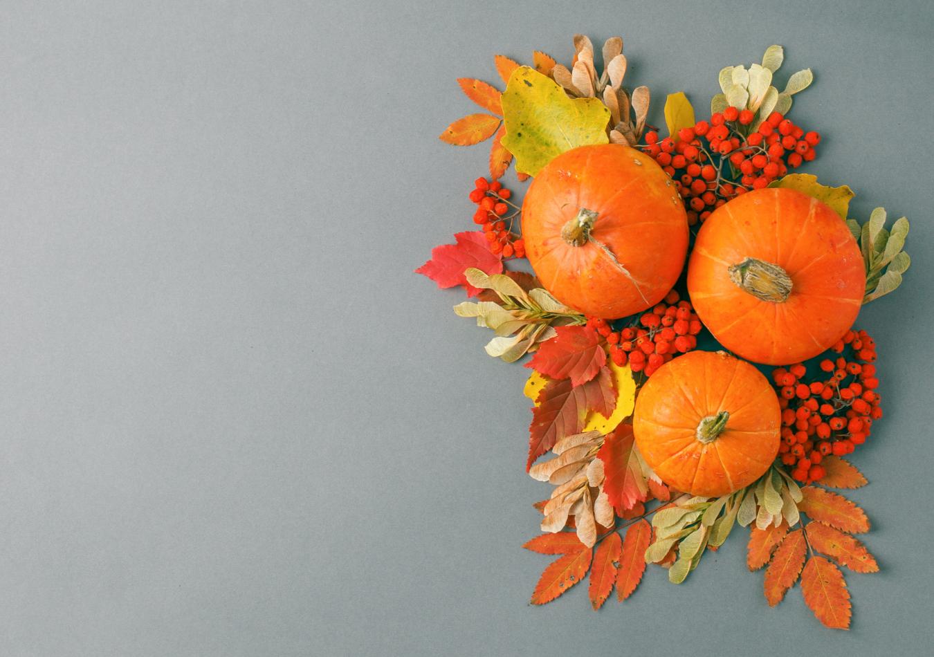 Autumn flatlays