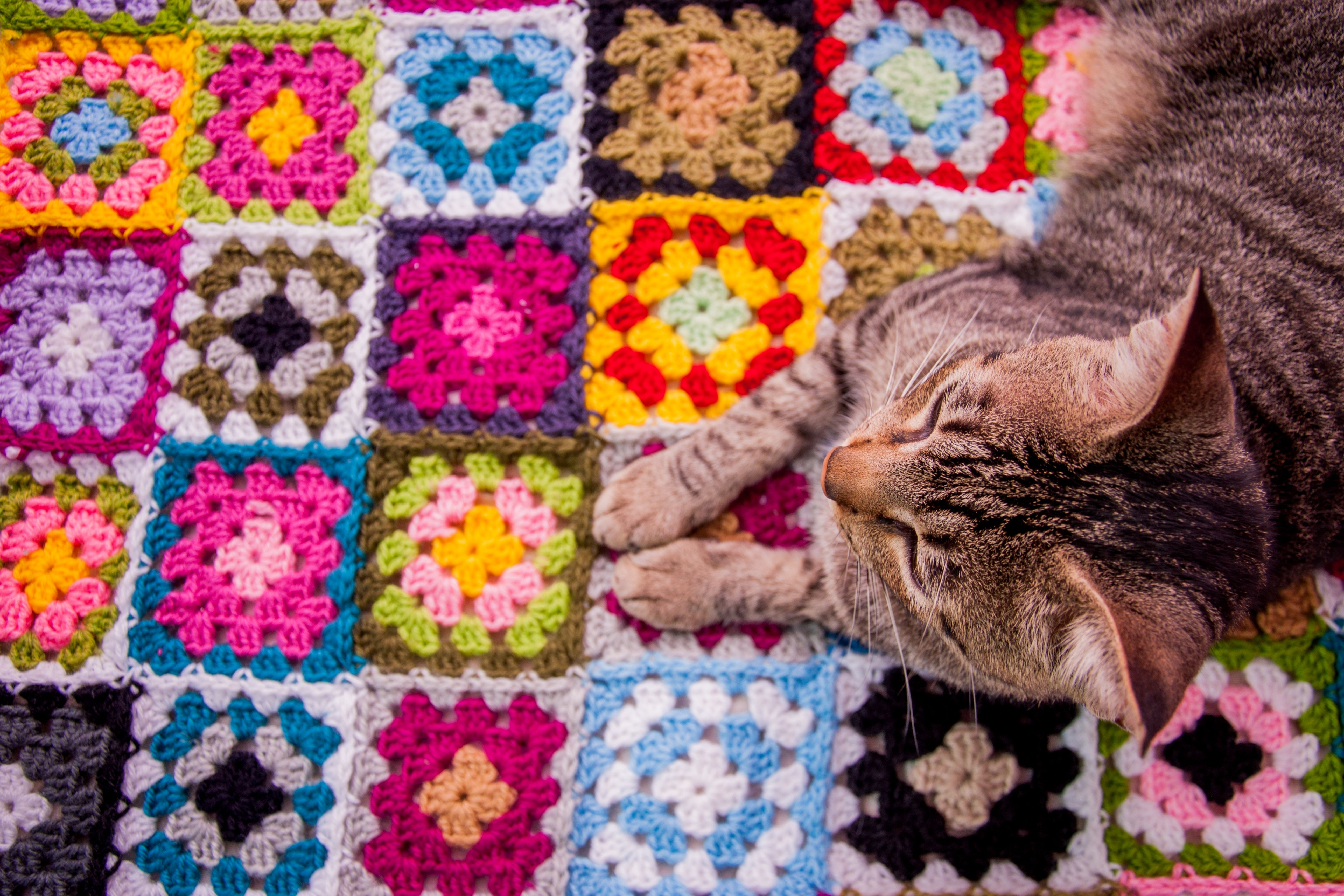 How Much Time Does It Take to Crochet a Blanket