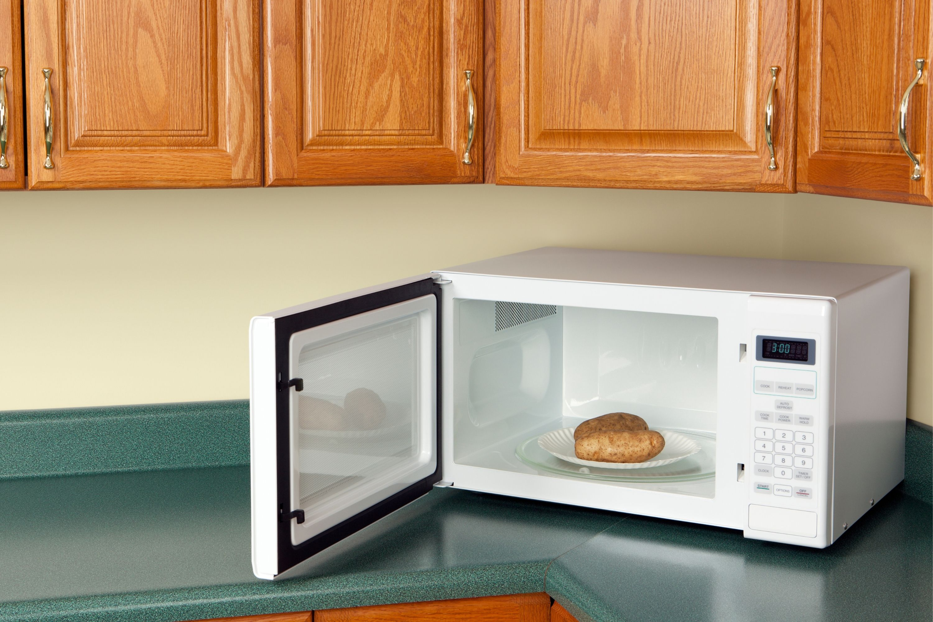 How Long to Cook Pizza Bagel Bites In a Microwave